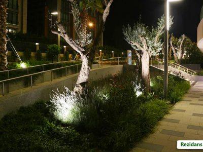 Koru Florya Rezidans ışıklı ağaçlar