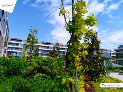 Koru Florya Rezidans bahçe peyzaj