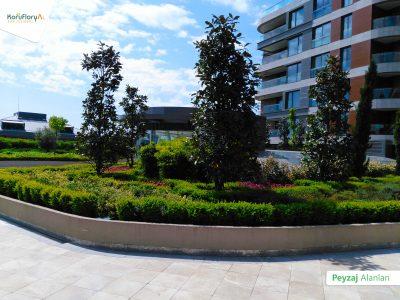 Koru Florya Rezidans peyzaj bahçe çalışması