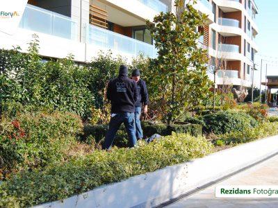 Koru Florya Rezidans Bahçe Çalışma