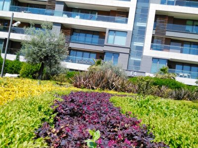 Koru Florya Rezidans Çimler ve bahçe